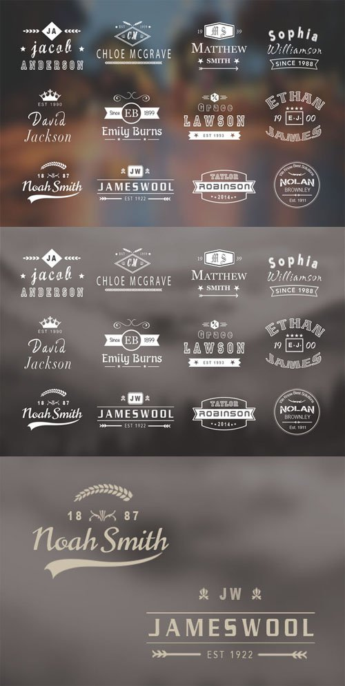 12 Vintage Name Logo Badges - Creativemarket 73880