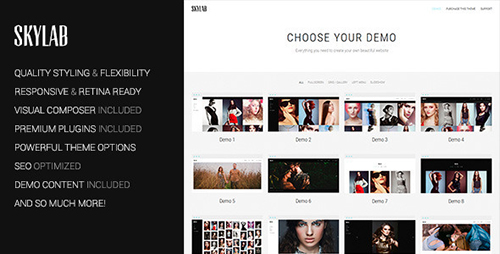 ThemeForest - Skylab v2.0 - Portfolio / Photography WordPress Theme