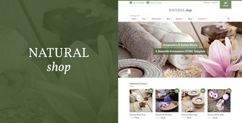ThemeForest - Natural Shop - Responsive eCommerce HTML Template - RIP