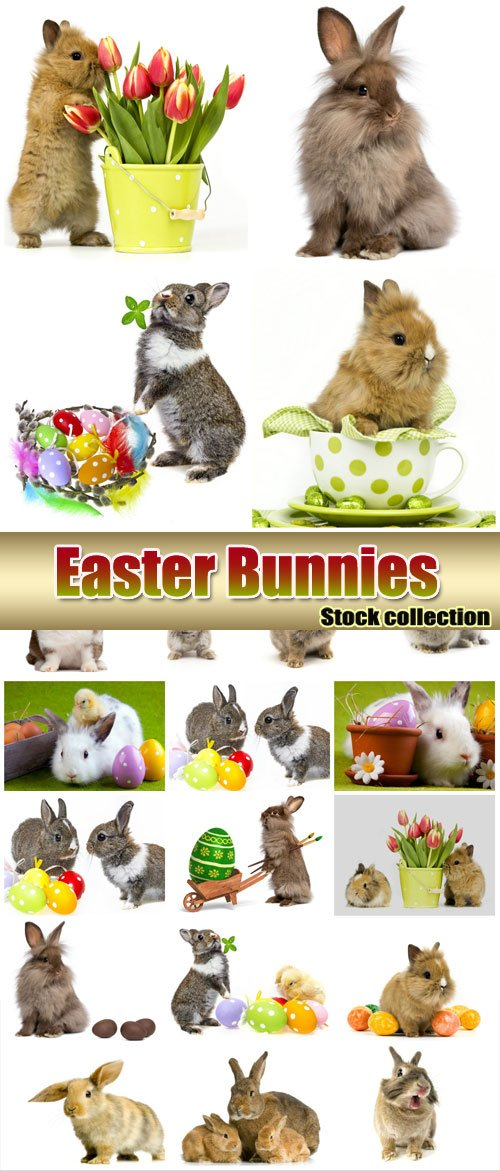 Easter bunnies with Easter eggs - stock photos
