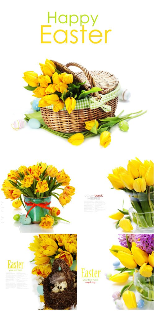 Easter, tulips, easter eggs - stock photos