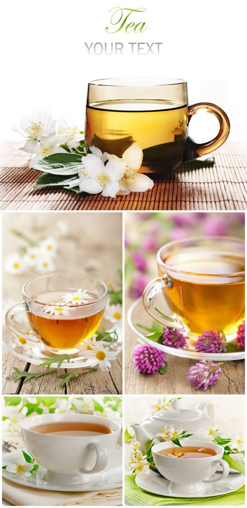 Jasmine tea and chamomile - Stock Photo