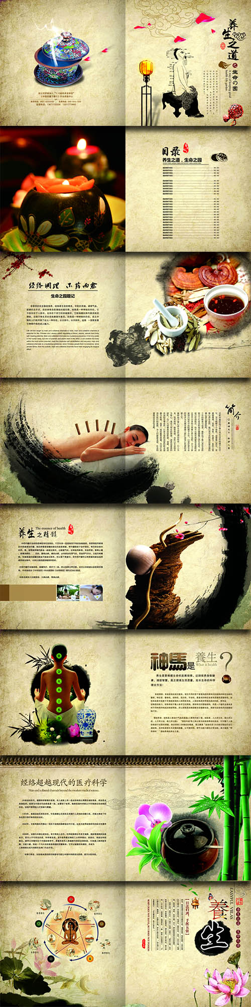 PSD Sources - Chinese Traditional Medicine #2