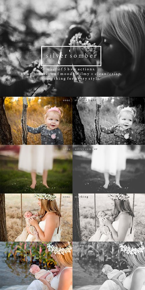 Silver Somber - Photoshop Actions - Creativemarket 2942