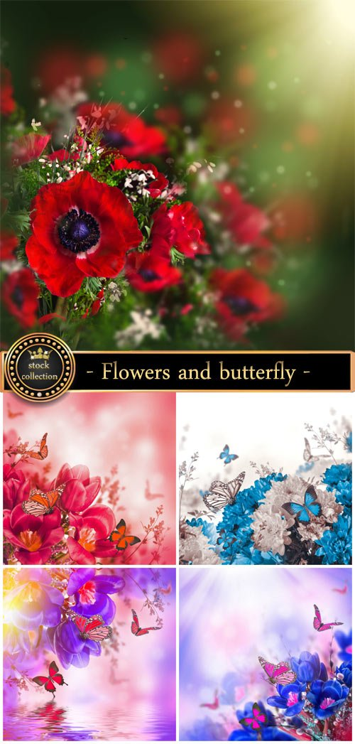 Flowers and butterfly - stock photos