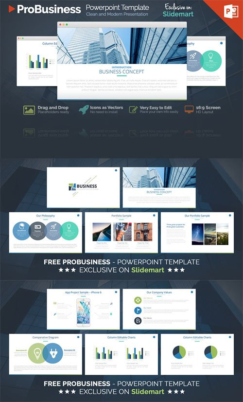 ProBusiness PowerPoint Presentation Template