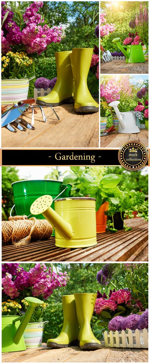Gardening - stock photos
