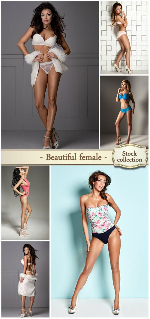 Beautiful female model looks - stock photos