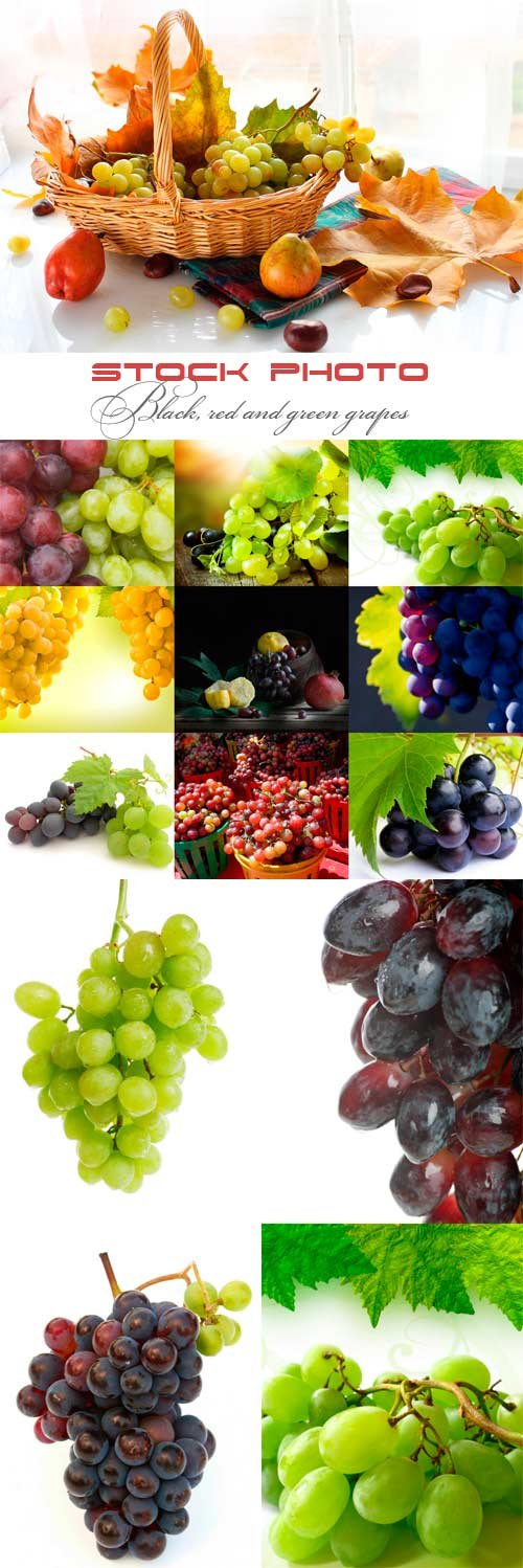Black, red and green grapes