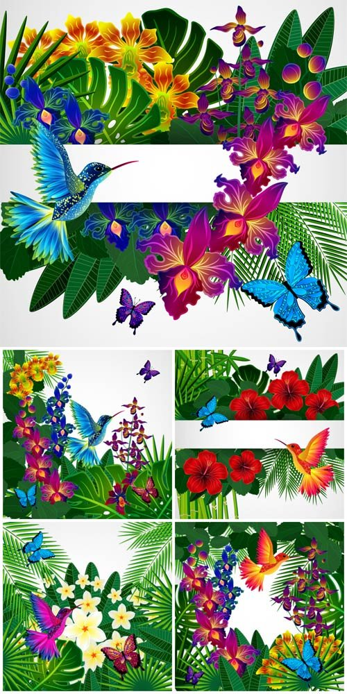 Tropical flowers and birds vector