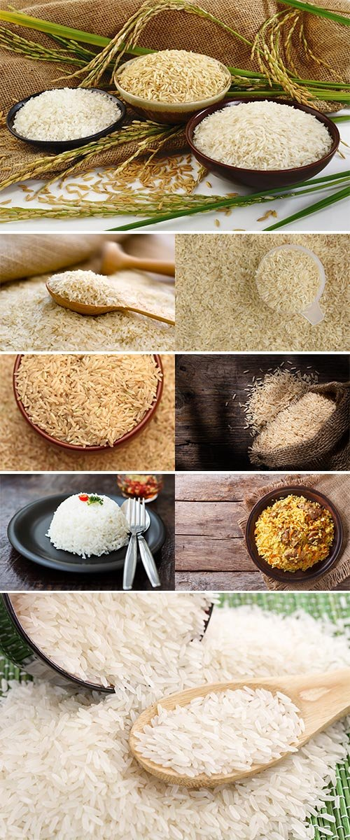 Stock Image Rice