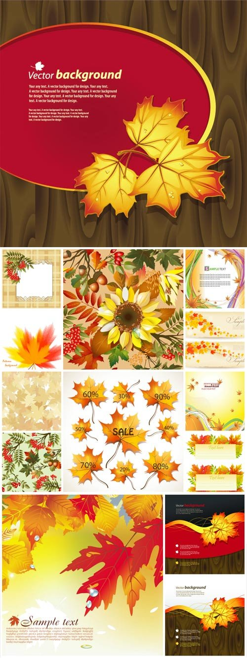 Autumn, vector background with leaves
