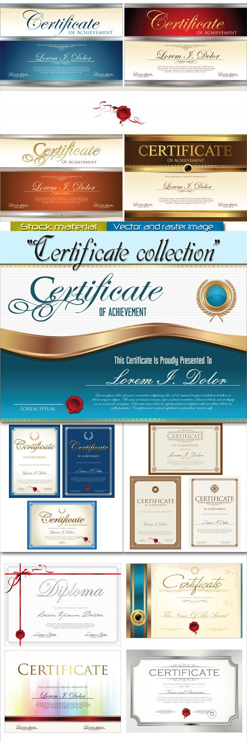 Collection templates in Vector - Certificates
