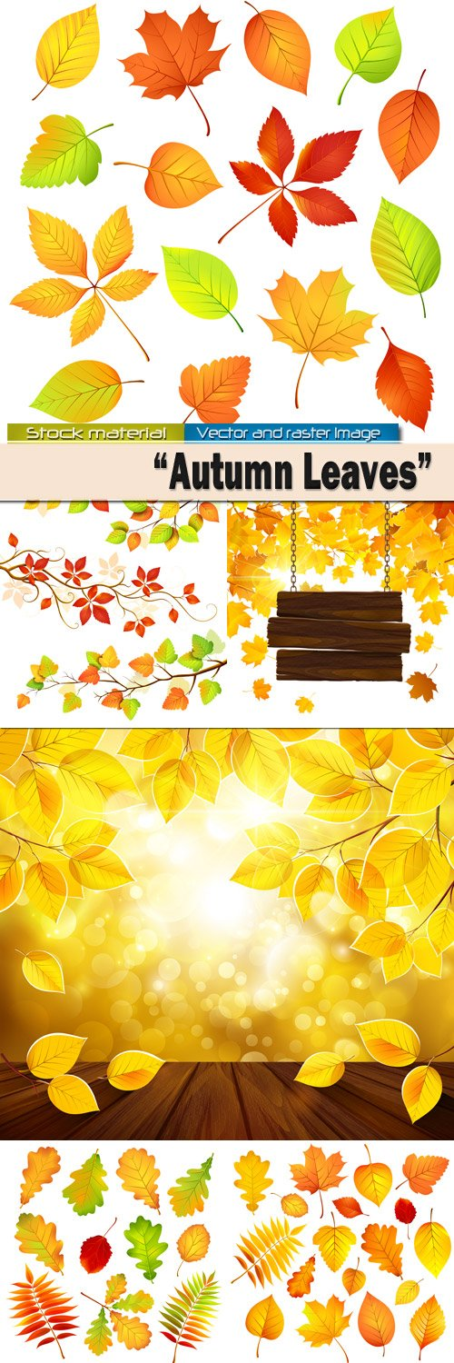 Bright autumn leaves in Vector