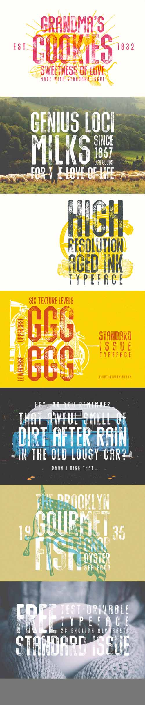 Standard Issue Typeface Font