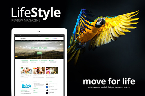 LifeStyle v1.1 - Reviews News Magazine - CM 382806