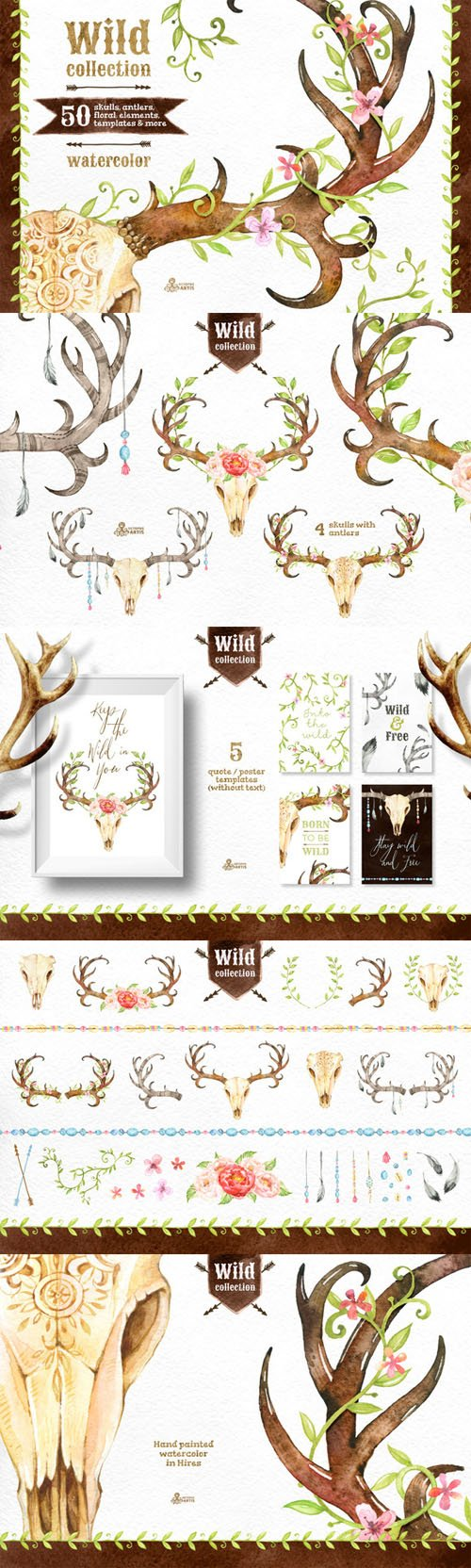 Wild Collection - CM 293347