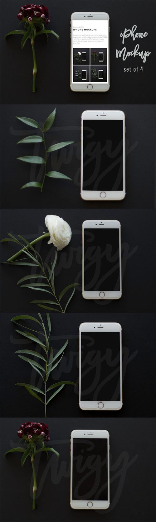 iPhone Mockup Square Format 477817