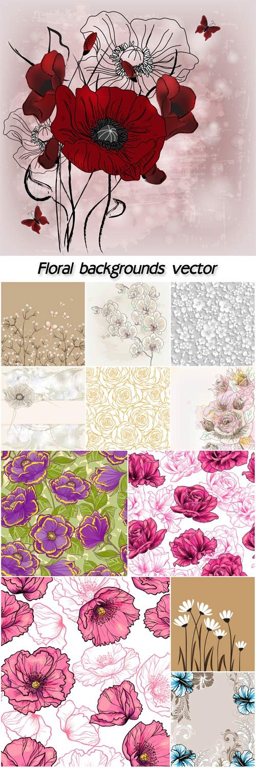 Floral backgrounds vector, poppies, roses, daisies