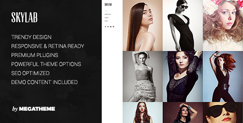 ThemeForest - Skylab v2.0.9 - Portfolio / Photography WordPress Theme - 4740718