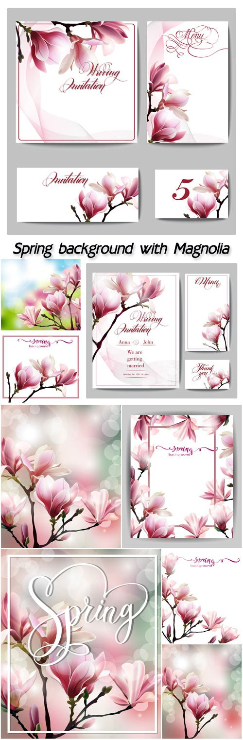 Spring background with blossom of Magnolia