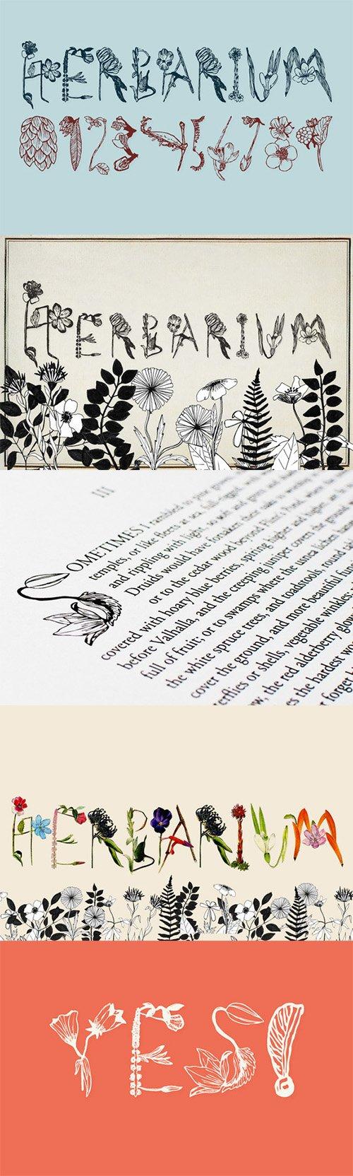 Herbarium Font - Creativemarket 2306