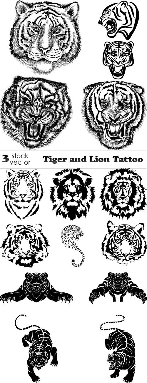 Vectors - Tiger and Lion Tattoo
