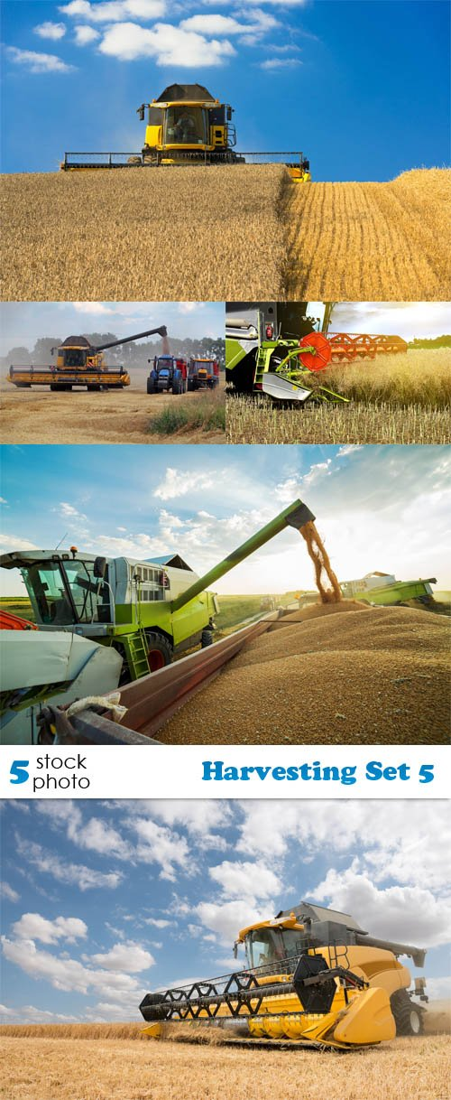 Photos - Harvesting Set 5