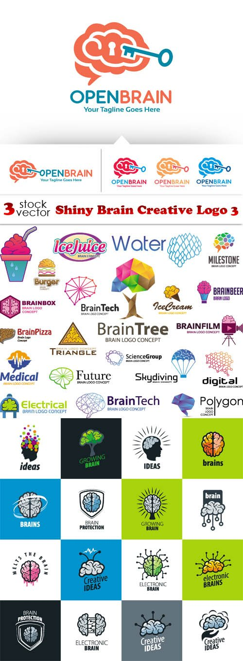 Vectors - Shiny Brain Creative Logo 3