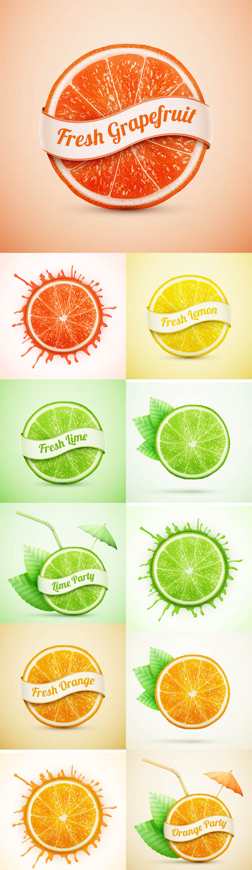 Vector Fresh Orange and Lime