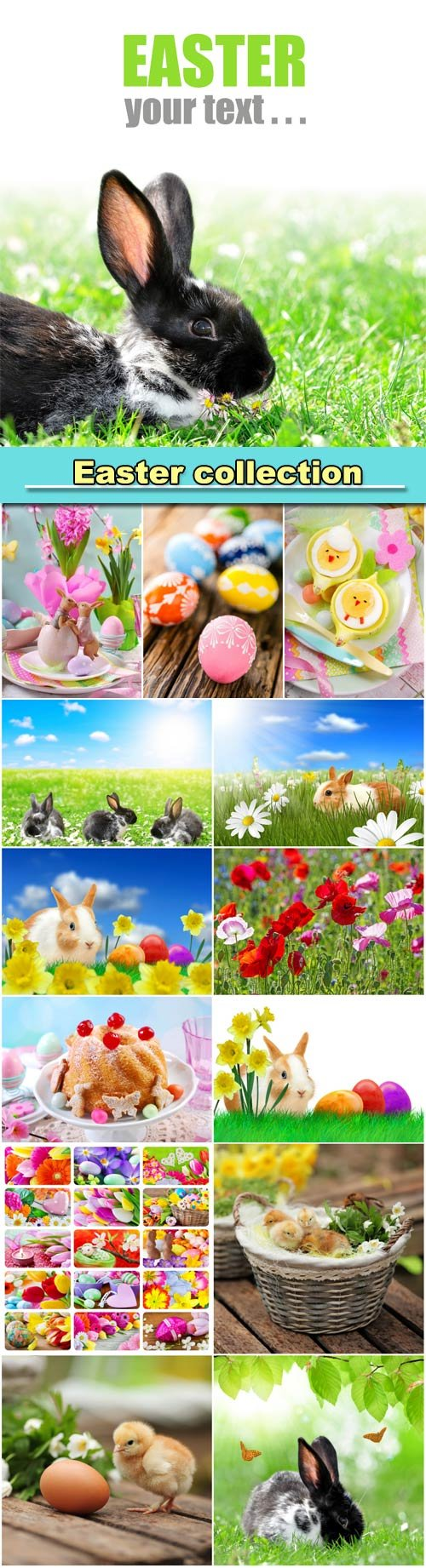 Easter collection, rabbits and chickens, Easter eggs