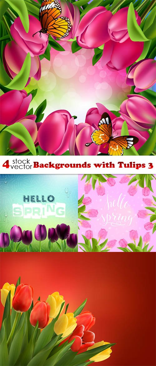 Vectors - Backgrounds with Tulips 3
