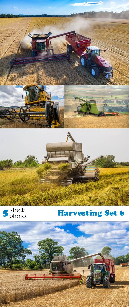 Photos - Harvesting Set 6