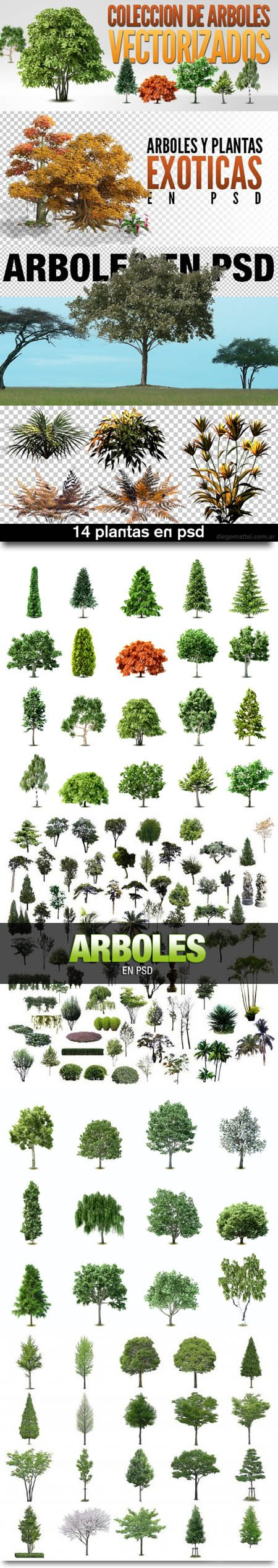 Variety of Trees and Plants in PSD & EPS