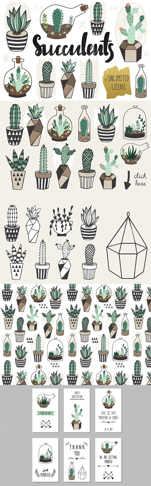 Succulents +Unlimited License - Creativemarket 319899