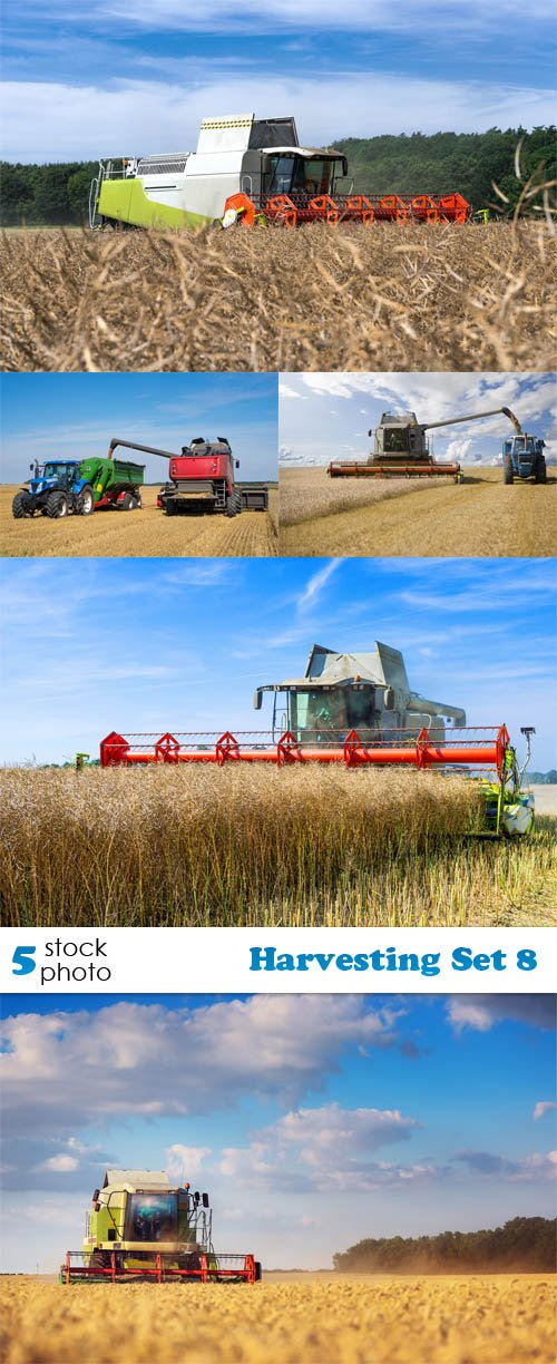 Photos - Harvesting Set 8