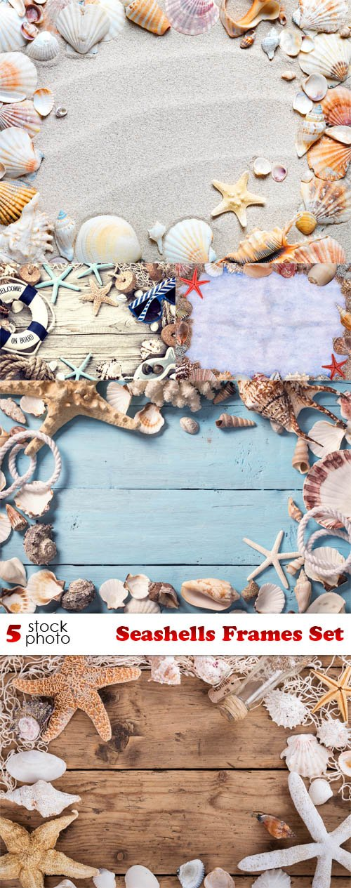 Photos - Seashells Frames Set