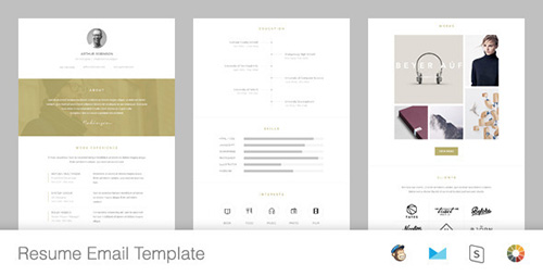 ThemeForest - Resume v1.0 - Responsive Email Template + Online Editor - 12135443