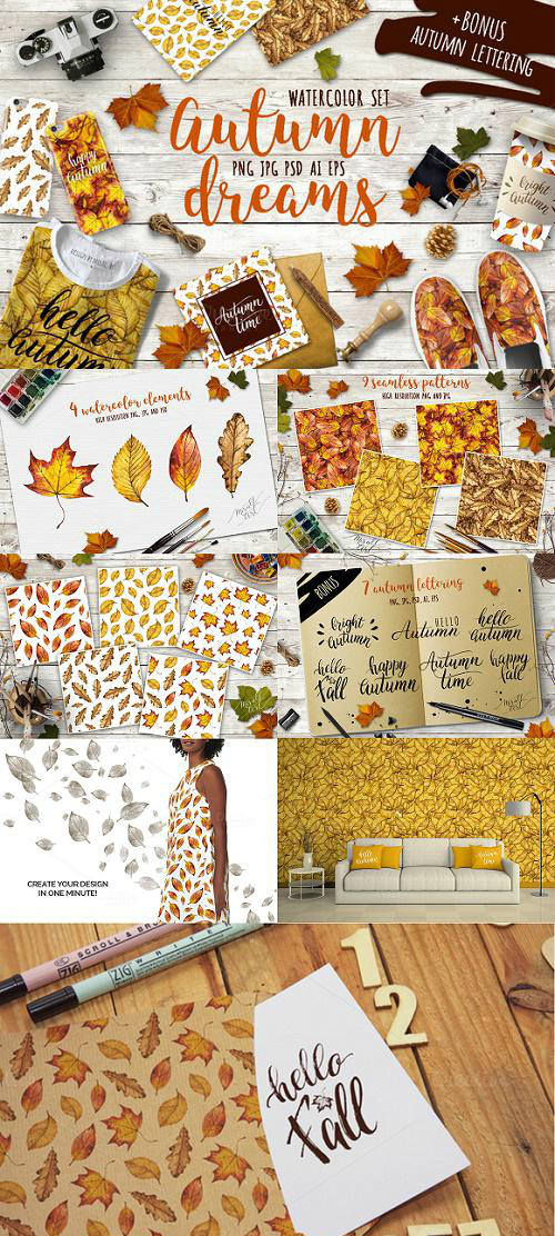 Watercolor autumn leaves - 904483