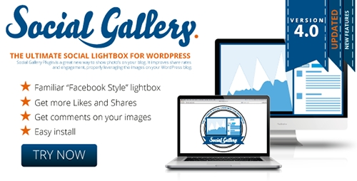 CodeCanyon - Social Gallery v4.6 - WordPress Photo Viewer Plugin - 2665332