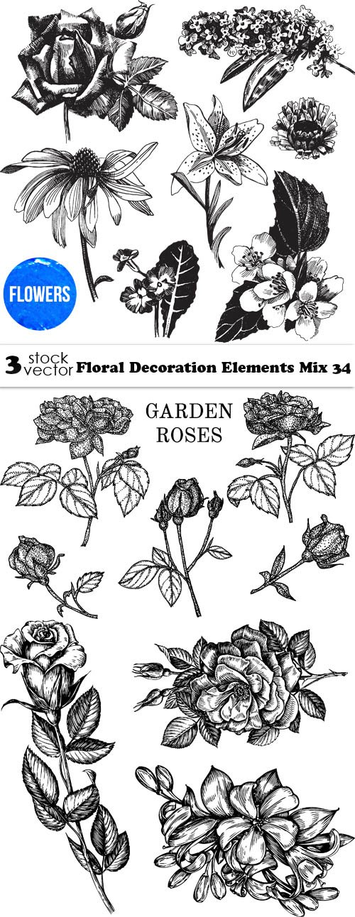 Vectors - Floral Decoration Elements Mix 34