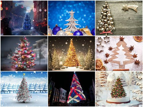50 New Year Trees HD Wallpapers