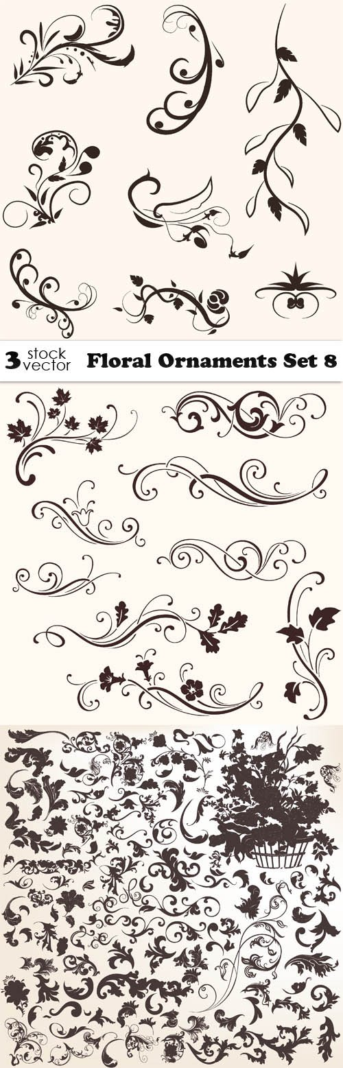 Vectors - Floral Ornaments Set 8