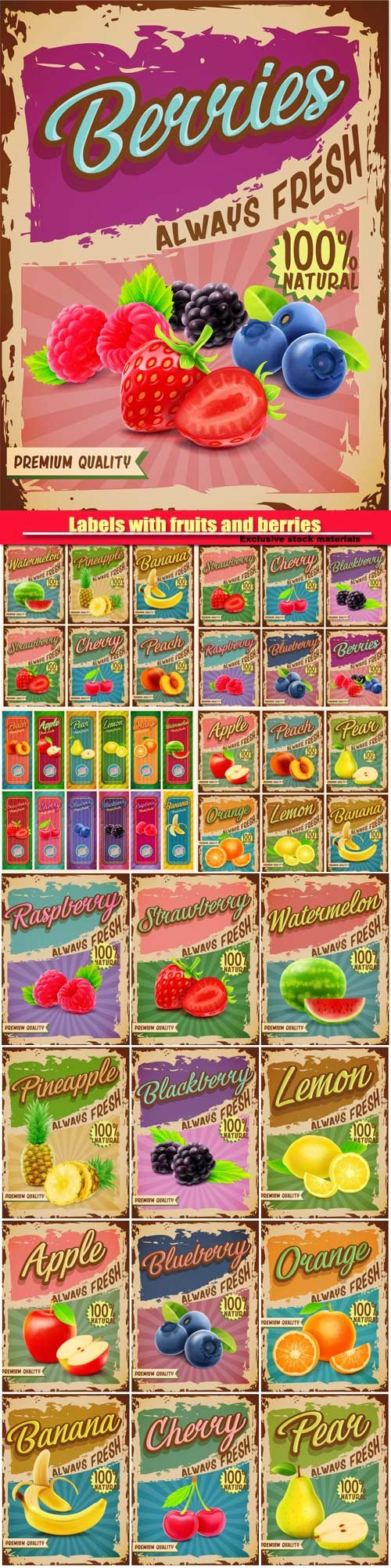Vector vintage labels with fruits and berries