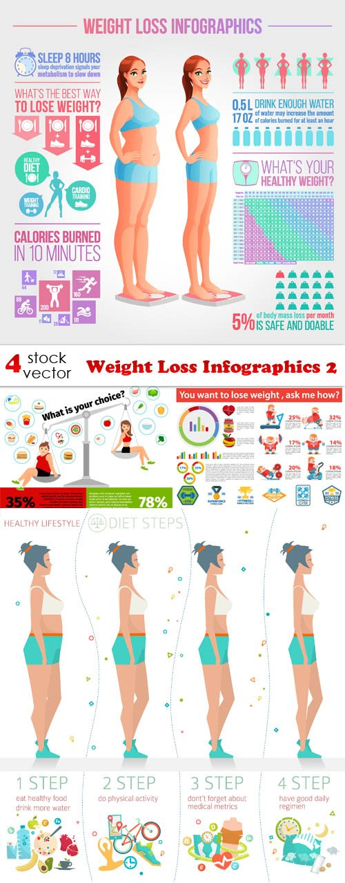 Vectors - Weight Loss Infographics 2
