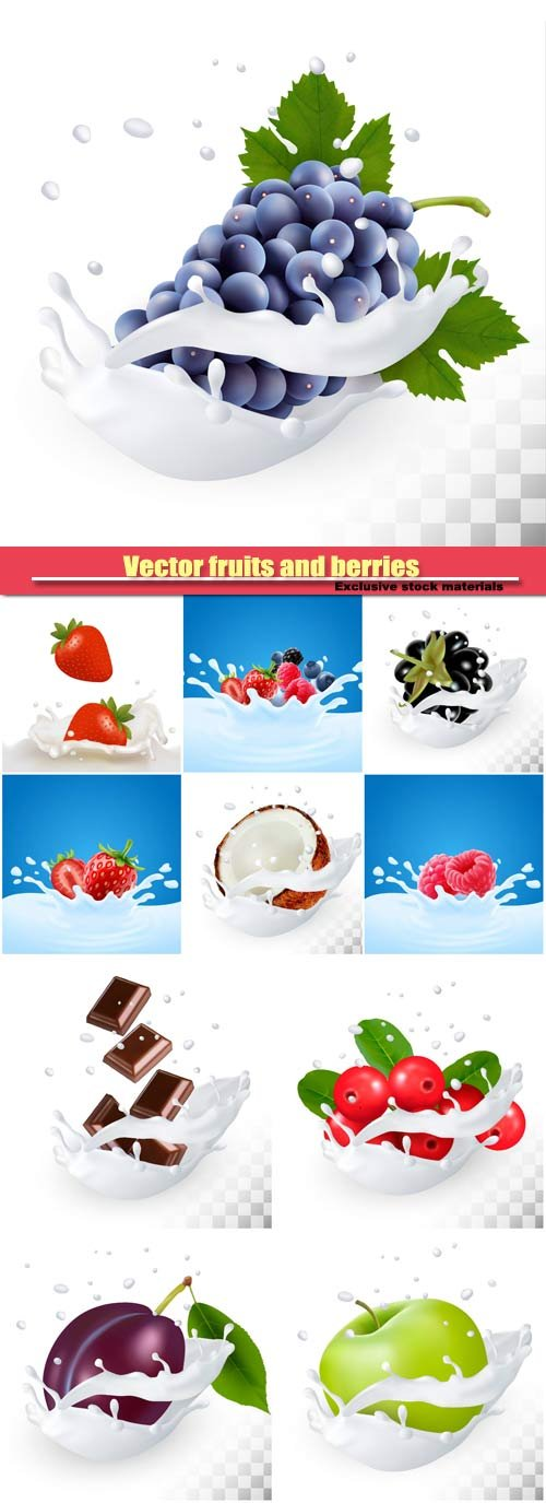 Vector fruits and berries in a milk splash on a transparent background