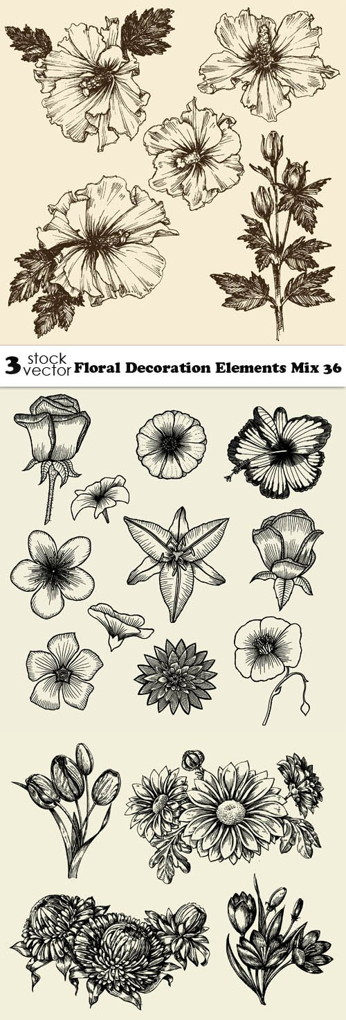 Vectors - Floral Decoration Elements Mix 36