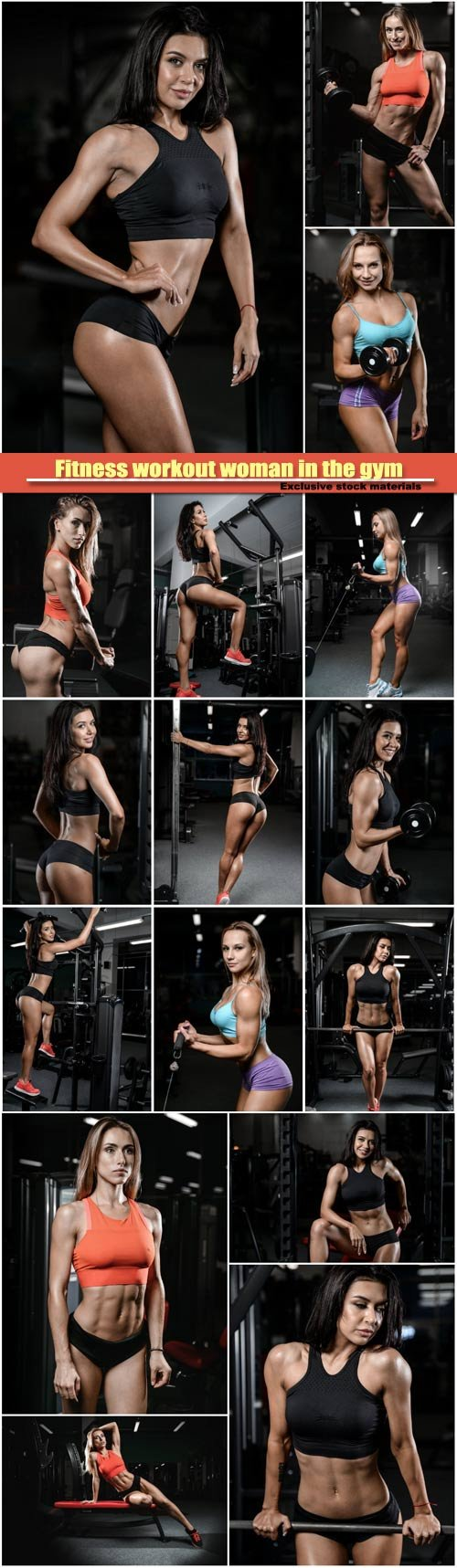 Fitness workout woman in the gym