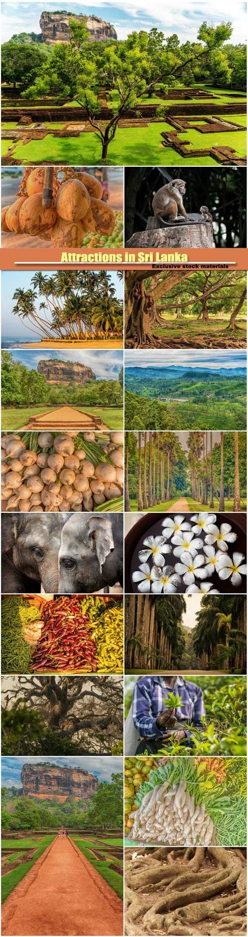 Attractions in Sri Lanka, people, animals and food