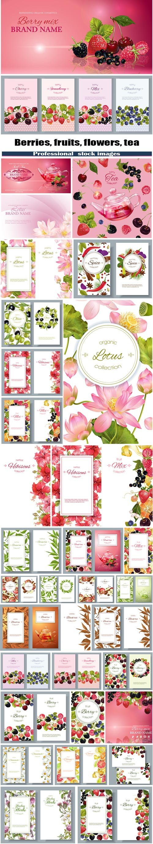 Berries, fruits, flowers, tea mix banners
